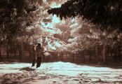 Зимний Биробиджан (ноябрь-декабрь) 2015г. фото Валентин Репин