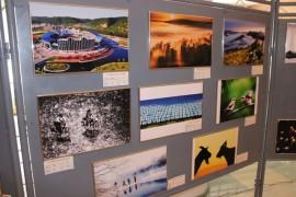 Выставки прошли в День города в Биробиджане (7)