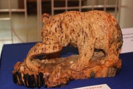 Выставки прошли в День города в Биробиджане (9)