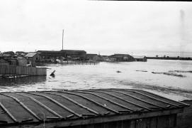 Биробиджан Пятидесятые Наводнение Фото Ю.Косвинцева