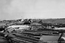 Биробиджан Пятидесятые Сплав леса по Бире для деревоперерабатывающего завода Фото Ю,Косвинцева
