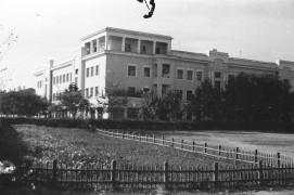 Биробиджан Шестидесятые Фото Ю.Косвинцева