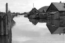 Биробиджан Шестидесятые Наводнение ФотоЮ.Косвинцева