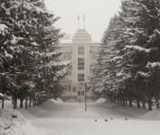 После снегопада 28 января 2009г.
