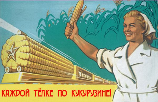 Царица полей все что вы должны знать о кукурузе  marie