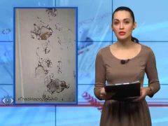 ГлазНародаЕАО: Стены из пены в Биробиджане, коммунальный беспредел в с.Ленинское ЕАО и «обалденный» маркетинговый ход от производителя аэрозоля