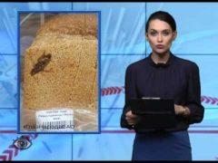 ГлазНародаЕАО : Хлеб с тараканом, файер шоу на ДСМ и другие материалы соавторов.