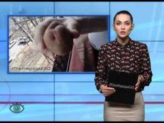 """ГлазНародаЕАО: Картофель с """"сюрпризом"""", креативные вандалы, непатриотичная реклама"""