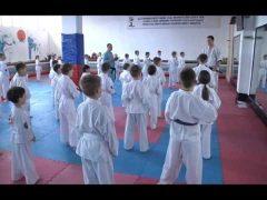 Более 100 юных кудоистов успешно прошли аттестацию в Биробиджане