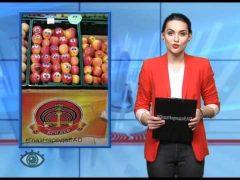 ГлазНародаЕАО: Песочный курьез, яблоки с глазамии другие материалы соавторов