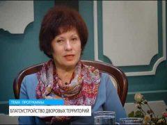 """Границы проекта """"Биробиджанский дворик"""" расширили в этом году – Любовь Парчевская"""