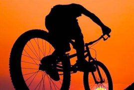 velosiped_velo_ukral_ugnal_vor