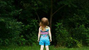 childforest-1