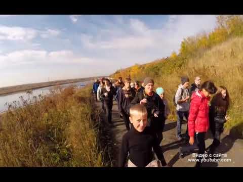 Всероссийский день ходьбы впервые отметят в ЕАО