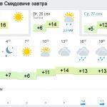 2-smidovich