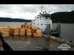 Более 230 кубометров древесины пытался незаконно вывезти бизнесмен из ЕАО в Китай
