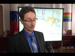 Презентацию фильма о полосатых хищниках провели в правительстве ЕАО