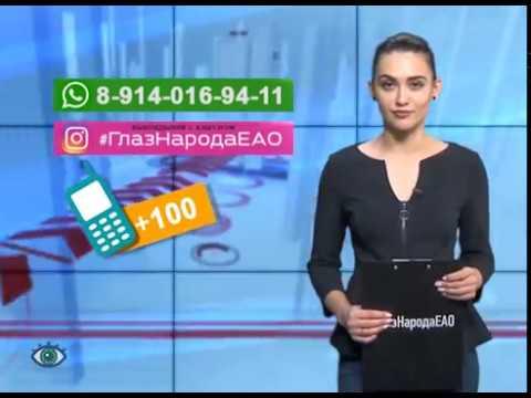 """ГлазНародаЕАО: упитанный рыжий обитатель ужаснул посетителя """"Какаду"""" в Биробиджане"""