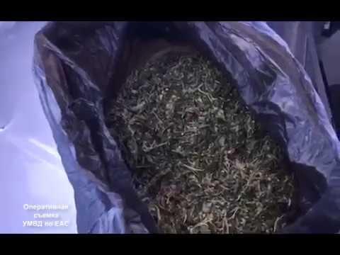 Наркокурьера с пакетом марихуаны задержали полицейские в Биробиджане