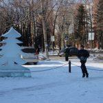futbolnyim-horovodom-vokrug-elki-startoval-festival-gorodskoy-sredyi-v-birobidzhane-21