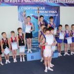 itogi-pervenstva-po-sportivnoy-gimnastike-podveli-v-birobidzhane-6
