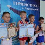 itogi-pervenstva-po-sportivnoy-gimnastike-podveli-v-birobidzhane-9