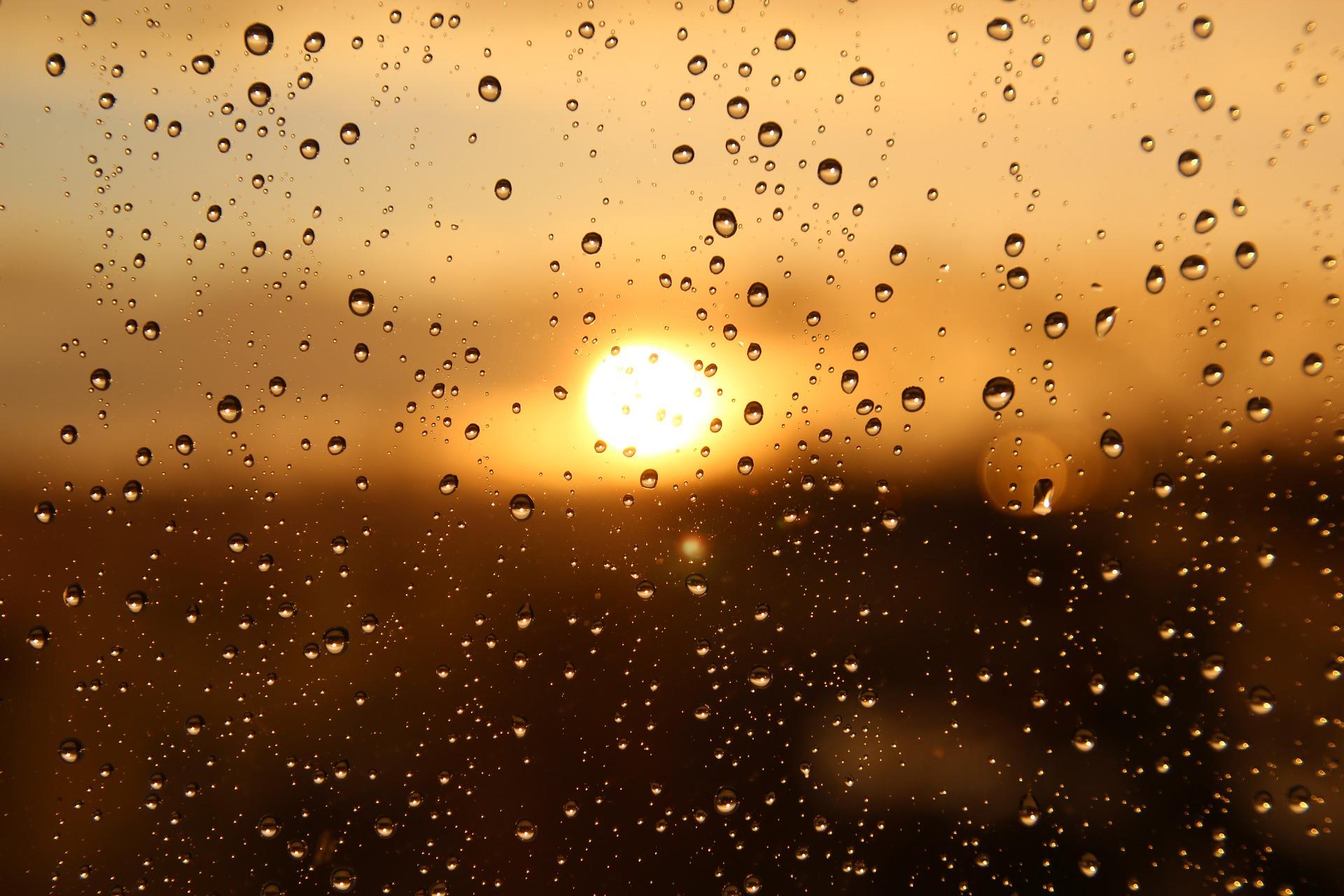 Солнце будет выглядывать во время дождя в некоторых районах ЕАО – прогноз погоды на 13 апреля