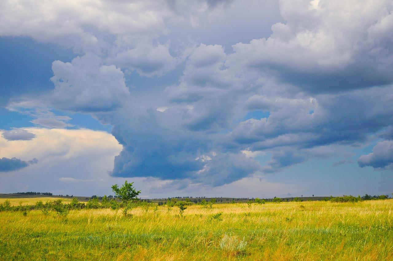Солнечно и с небольшим дождём пройдёт суббота в ЕАО – прогноз погоды на 5 июня